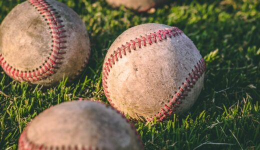野球観戦の楽しさとは何か?それは心を踊らせるあの存在があるからでは?